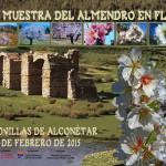 Muestra del Almendro en Flor