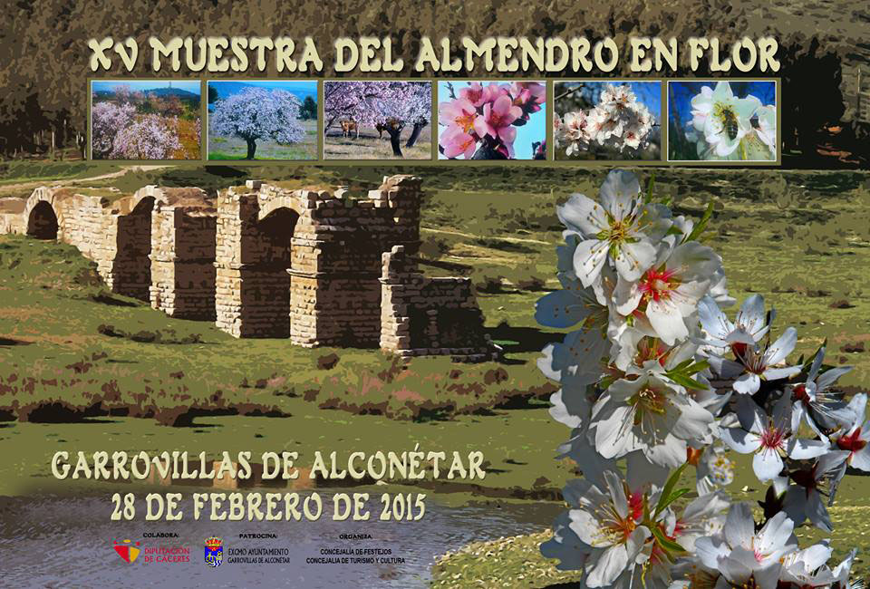 cartel-almendro-flor-2015-garrovillas