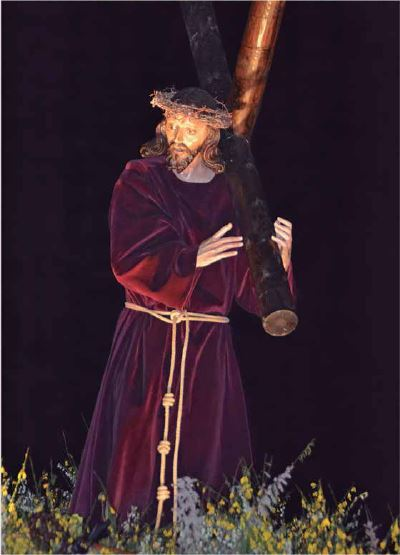 Stmo. Cristo del Amparo