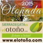 Logo Otoño 2015