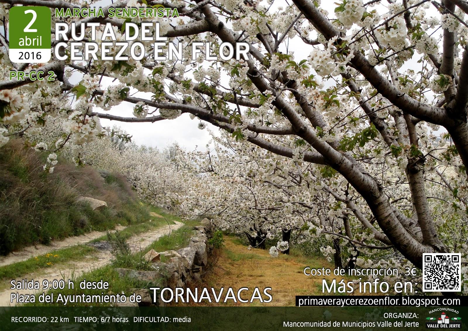 Ruta del Cerezo en Flor - Valle del Jerte 2016
