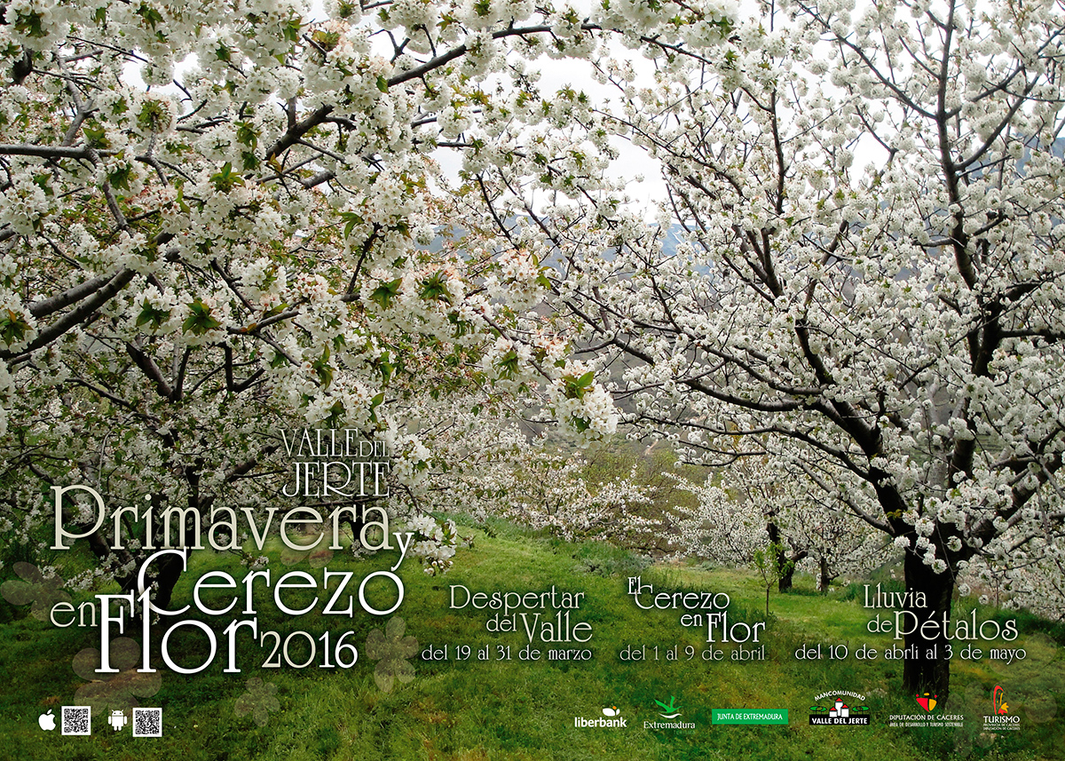 Cerezo en Flor 2016 - Valle del Jerte